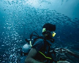 The Essence Of Scuba Diving Certification