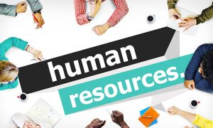 Importance of a Human Resources Personnel in a Small Business