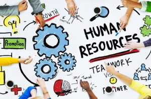 Human Resources 101 – Important Things That You Have To Know When It Comes To It