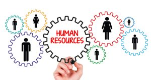 Role Of Human Resources