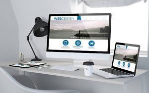 The Web Design Company for You