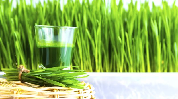 Advantage of Wheatgrass
