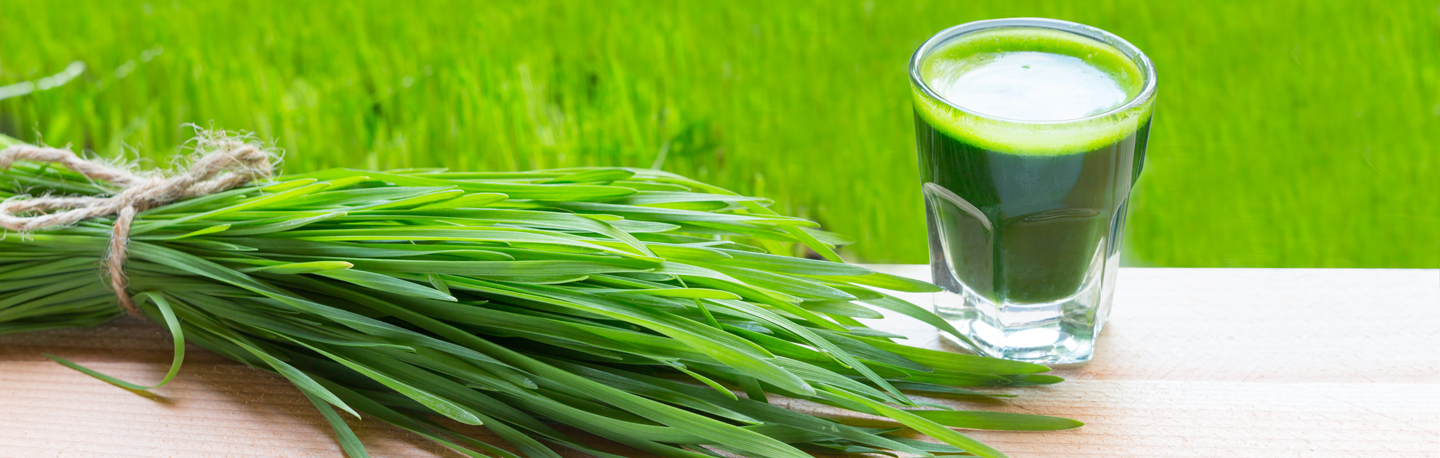 Health And Wellness Advantages of Fresh Wheatgrass Juice