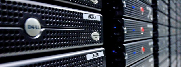 Is Dedicated Web Server Organizing a Great Option?