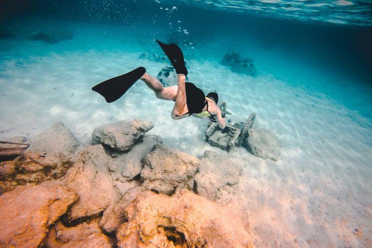Snorkeling in abu dhabi